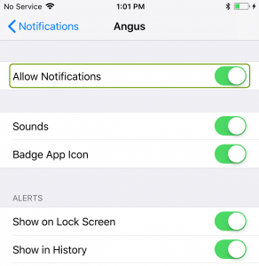 Turn on allow notifications on iOS device for Angus AnyWhere notifications