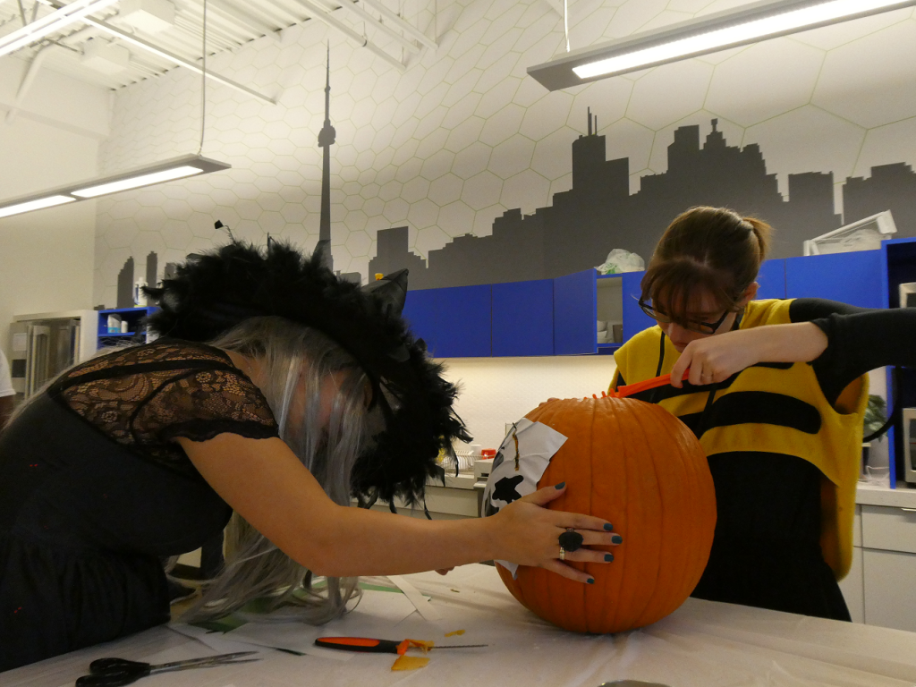 Halloween Pumpkin Carving Activity